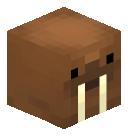 Exclusive_Walrus's head