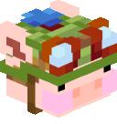 Celebre's head