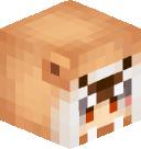 Evanth's head
