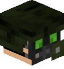 TheGunnerSVK's head