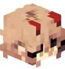 Mycota's head